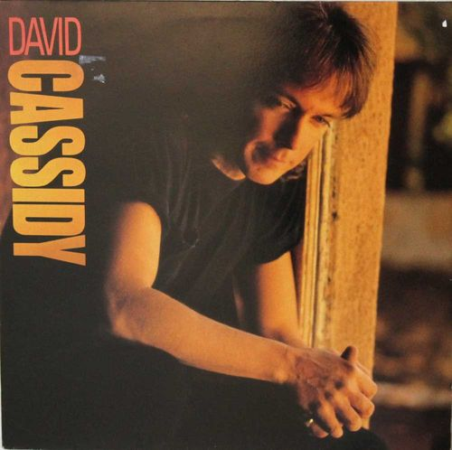 David Cassidy : Labor Of Love LP